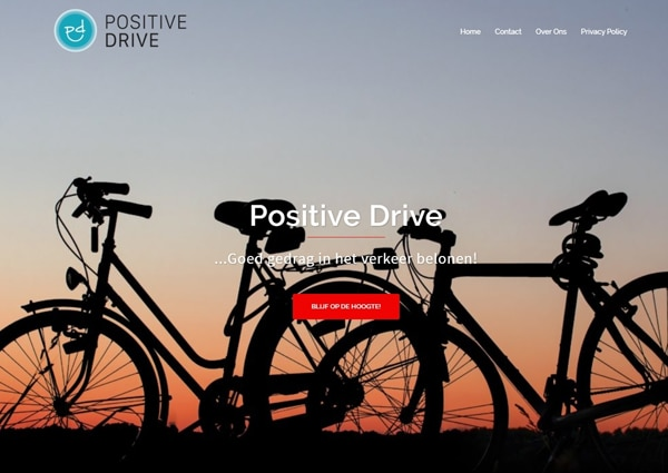 screenshot positive drive website
